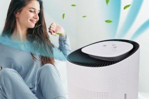 Пречистването на въздуха у дома - мисия възможна